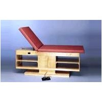 Bailey Professional Hi-Lo Treatment Table